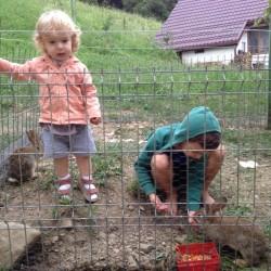 copii ferma penteleu (6)