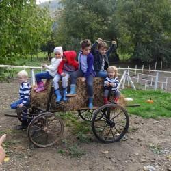 copii ferma penteleu (7)